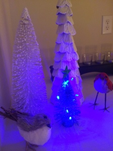 These two birdies were longing for a third little tree. So I gave in.