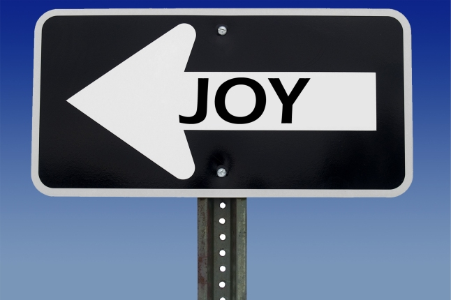 joy-road-sign