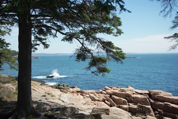 AcadiaOcean4Web