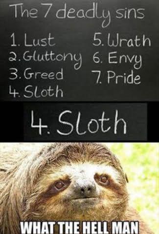 final sloth