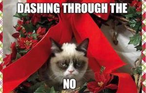 grump-cat-christmas